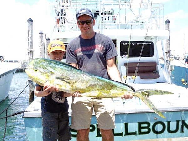 mahi-mahi-fishing