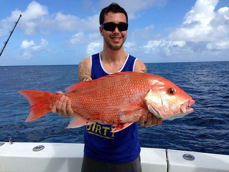 red-snapper-miami